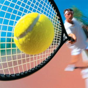 Ремонт грунтовых теннисных кортов, строительство теннисных кортов, ремонт теннисных кортов.